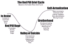RedPillGriefCycle